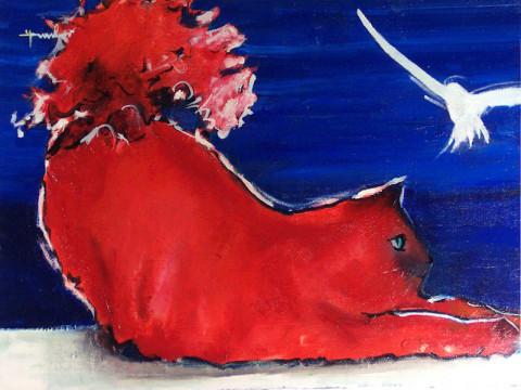 Le chat rouge et la mouette